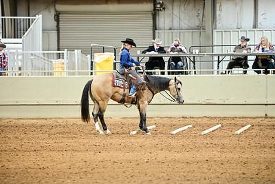 Novice Amateur Ranch Riding
