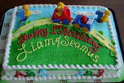 Liam & Seamus 1st Birthday