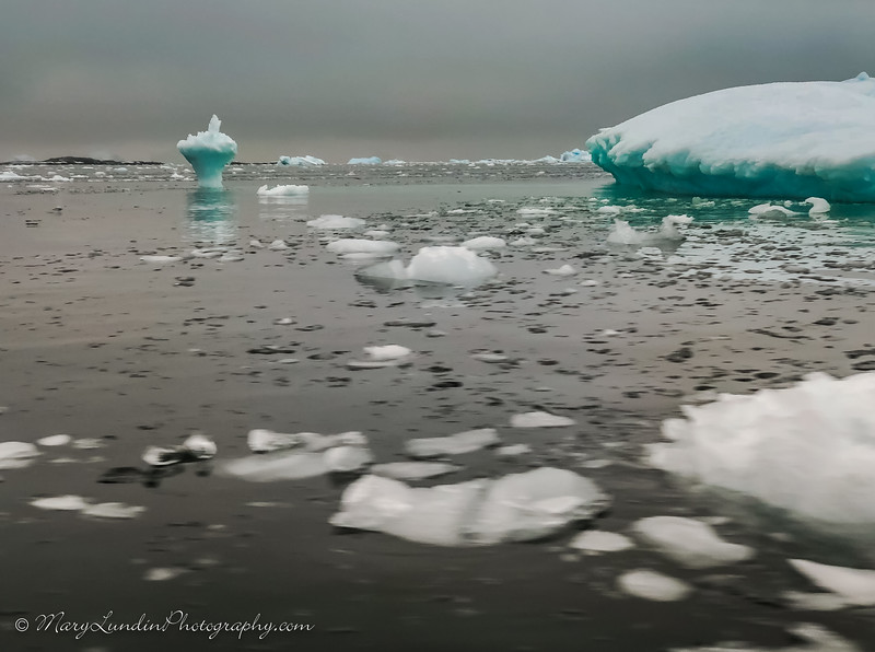 Antarctic-19