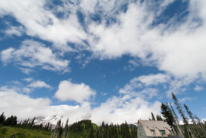 Mt. Rainier National Park. Paradise, WA.