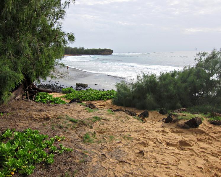Kauai'10_S90_097.jpg