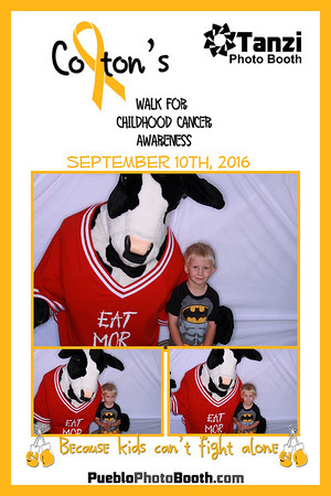 Team Colton's Walk for Childhood Cancer Awareness 2016