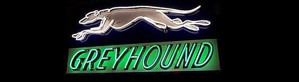 greyhound-neon.JPG