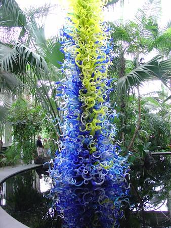 Botanical Garden August 19, 2006