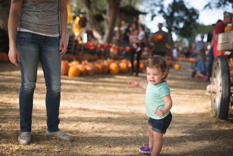 Stevies First Pumpkins-4407.jpg