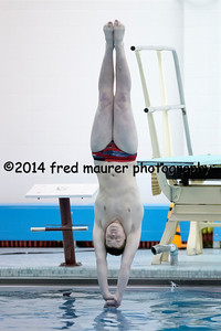 PIAA District III Diving Championship 2/22/2014