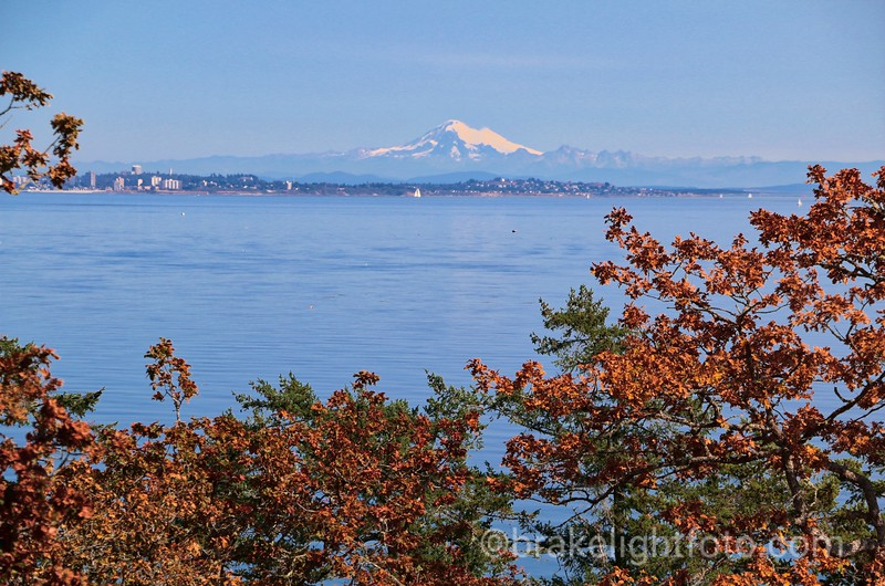 Mt Baker & Victoria from Devonian Park