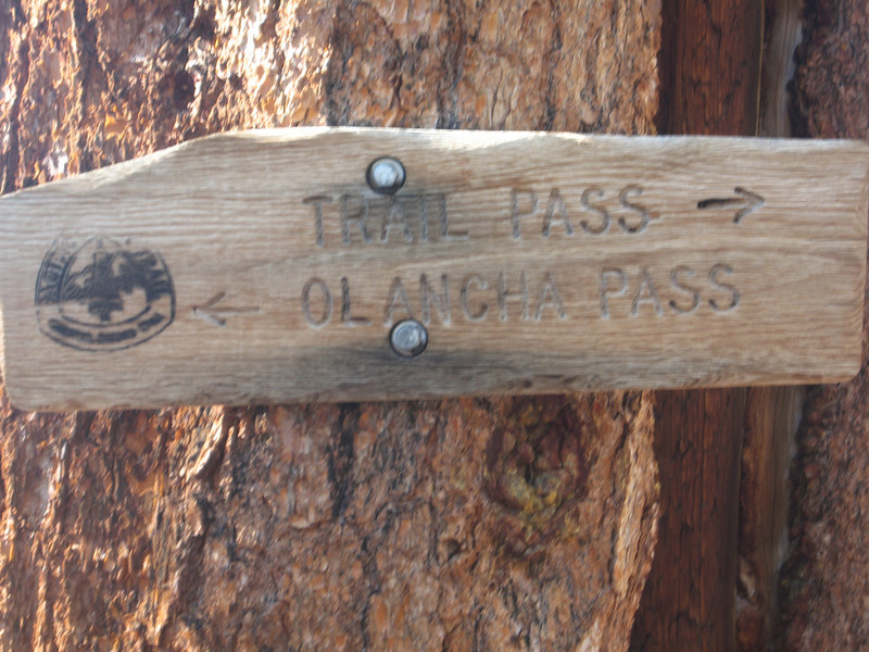 Mulkey Pass crosses the PCT - we will go south on the PCT from here