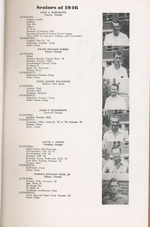 1946 Cypress Knee