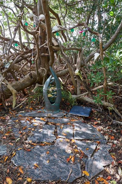 Useppa-Botanical-Walk-212.jpg