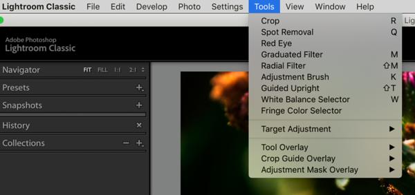 The Tools Menu in the Develop Module