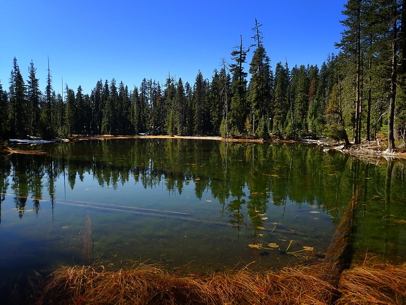 Dwarf Lakes Area Sky Lakes Wilderness Oregon