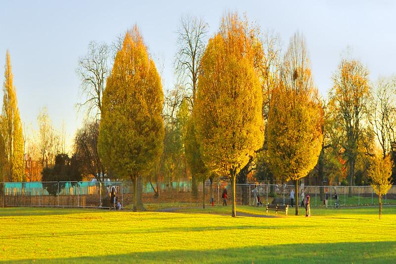 Clissold Park~5631-3.