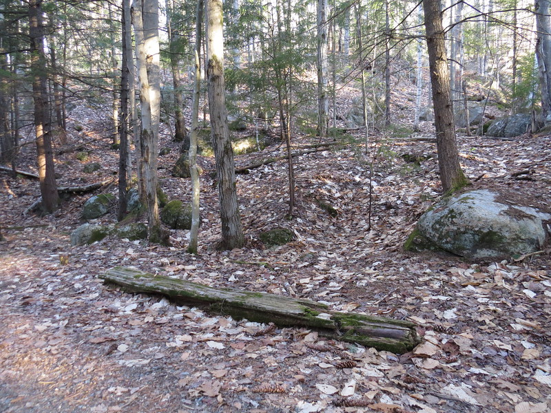Not sure if I ever noticed old ties next to the trail.JPG