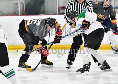 Adirondack Black Bears vs Rhode Island Knights