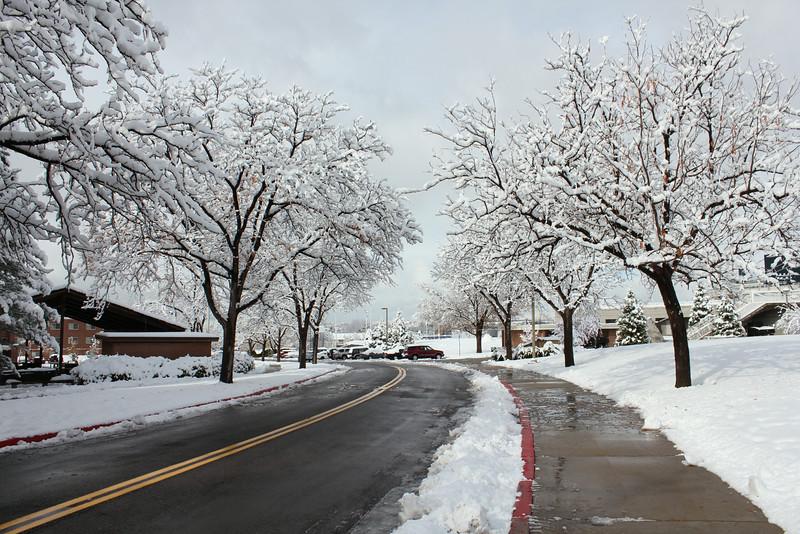 Snowy_Morning_11_10_2012_3310.JPG