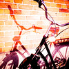 Shadow & Bike