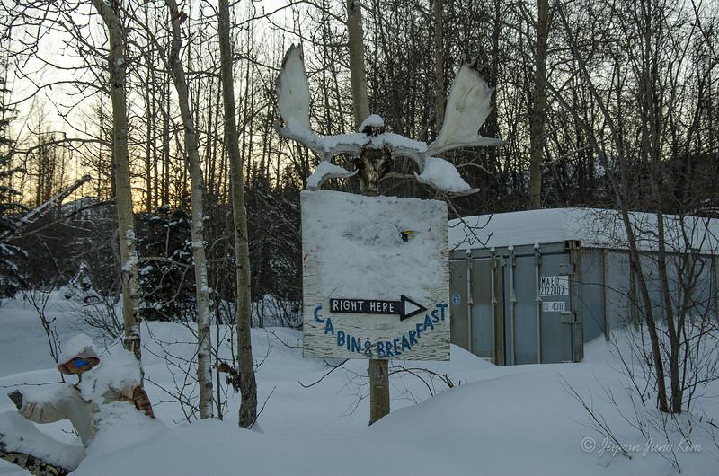 USA-Alaska-atigun pass-3167.jpg
