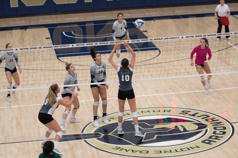 HPU Volleyball-93113.jpg