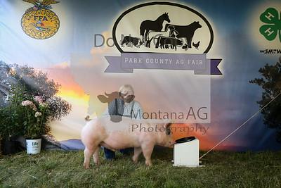 Swine Sale Pictures