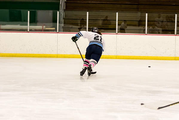 STA_DHS Girls Hockey 013115 Album 2