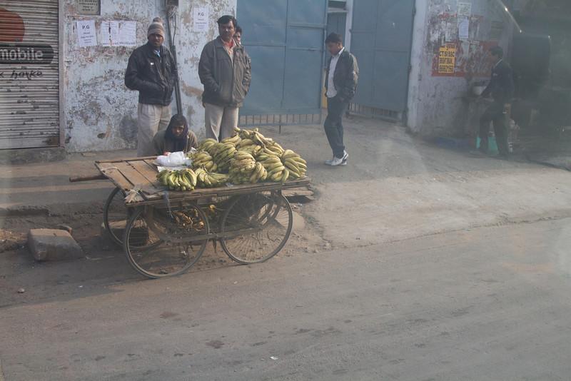 India_2012Feb-5168.jpg