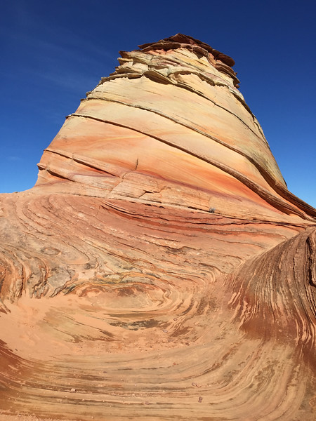 Coyote Buttes Cottonwood - south coyote buttes - KW - KCOT.jpg