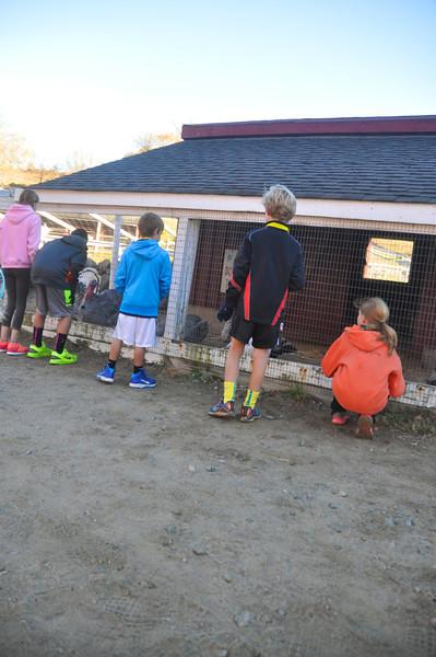 TC Between Kids and 5 Miler Races 2013