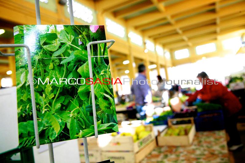 066-Market_Zone2014.jpg