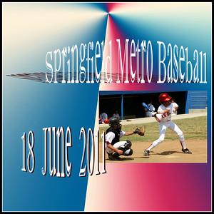 """Springfield Metro Baseball * 2011"""