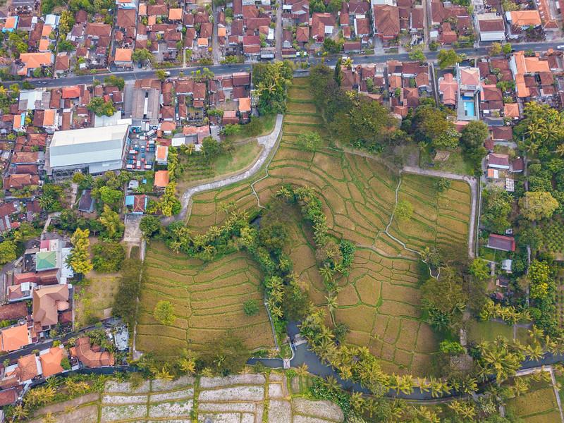 Bali (176).jpg