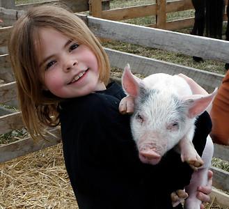 Baby Animal Days 2008