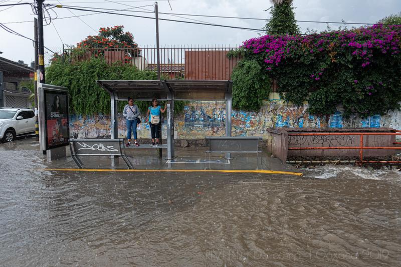 Jay Waltmunson Photography - Street Photography Camp Oaxaca 2019 - 094 - (DSCF9496).jpg