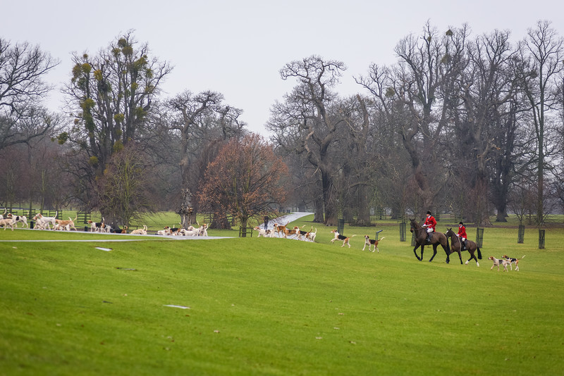 Fitzwilliam Burghley Park-9-2-9.jpg