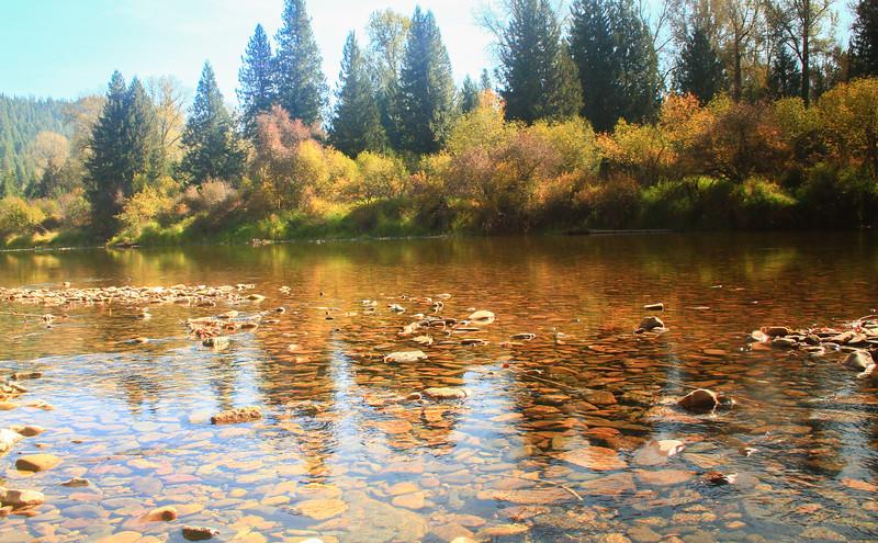 fall 2019 cda river-1589.jpg