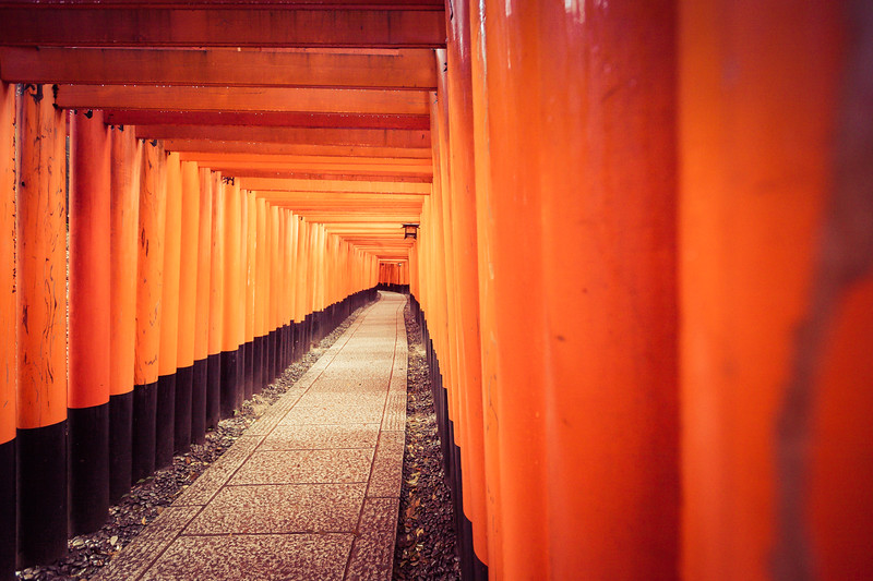 Looking Back at Fushimi Inari-taisha, Kyoto Japan