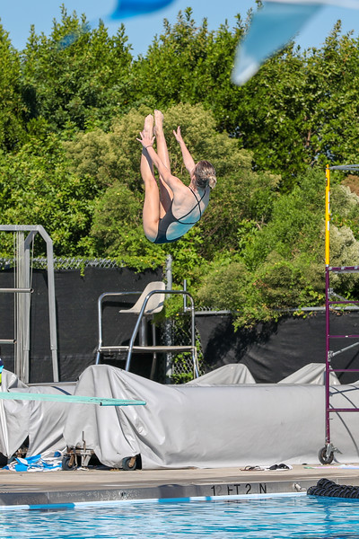 10.30.18 CSN Swim-Dive Districts-237.jpg