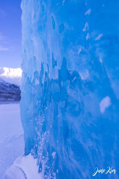 2020-01-17_Alaska Wild Guides-6102441-Juno Kim.jpg