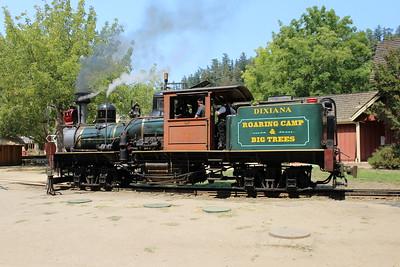 Roaring Camp and Big Trees Narrow Gauge Railroad