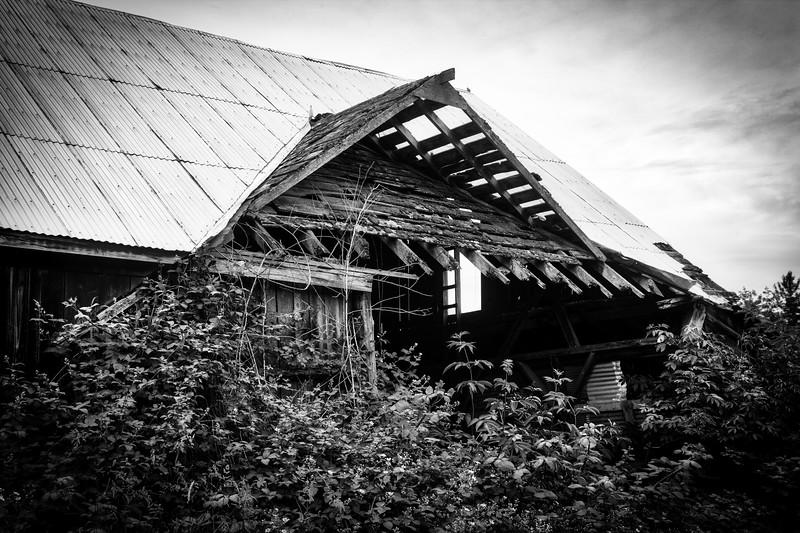 Everson Wash. barn