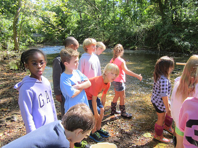 2C Visits the Creek