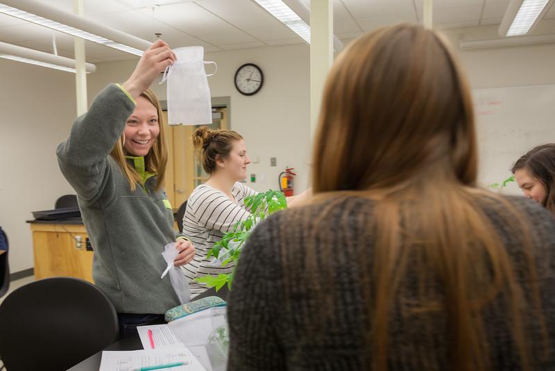 Alyssa Hakes Classroom-89.jpg