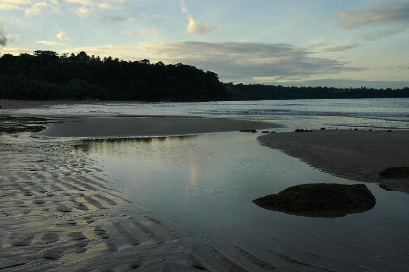 morn Seashore.jpg