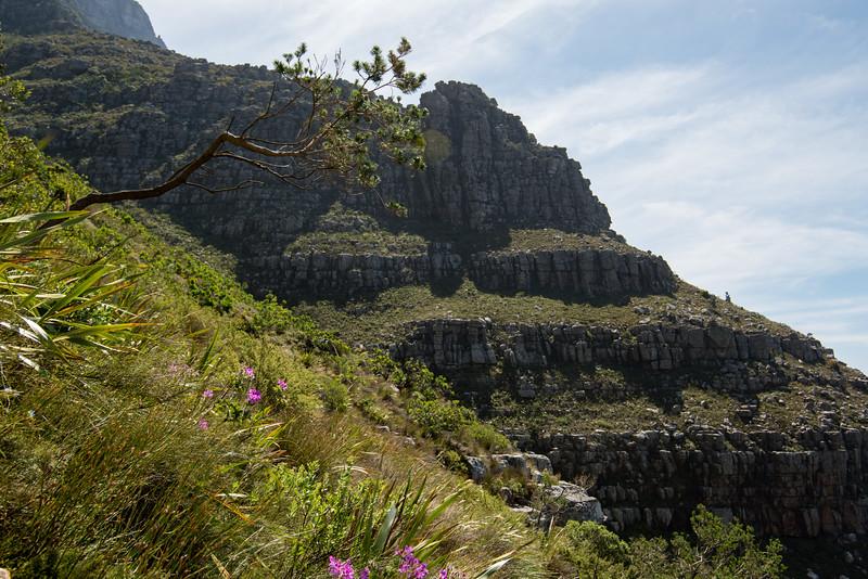 Cape-Town-392.jpg