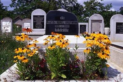 ROMANIA, Cluj Napoca. New Orthodox Jewish Cemetery. (2004)