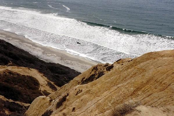 1990 California