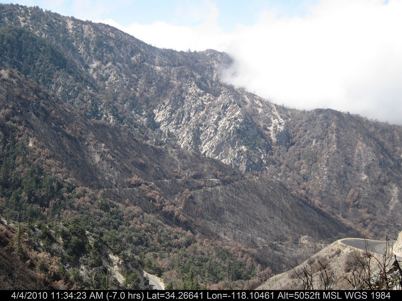 20100404074-Angeles National Forest, Strawberry Peak trail.JPG