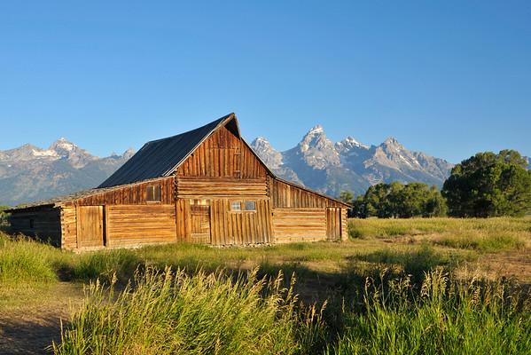 Grand Teton and Yellowstone 2010