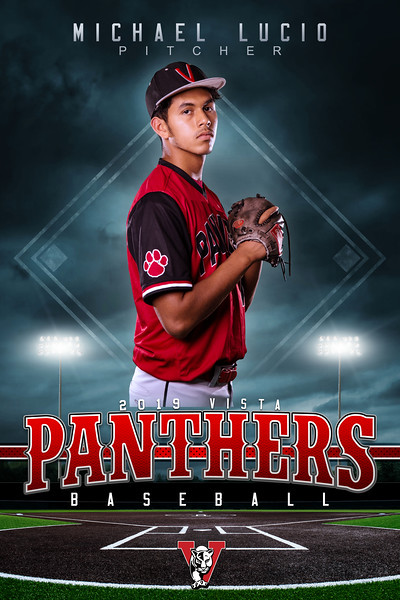 Panthers_Baseball_Vertical_16x24.jpg