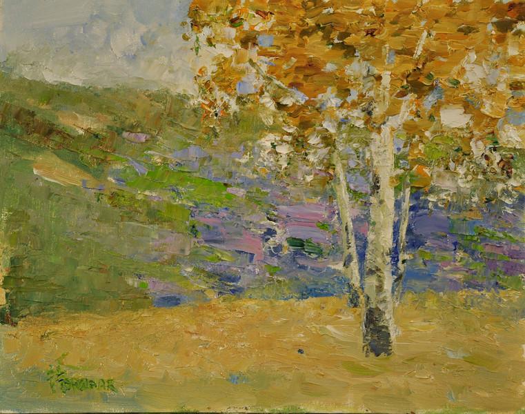 Sundance Fall, UT, Oil on Canvas Brd, 11x14